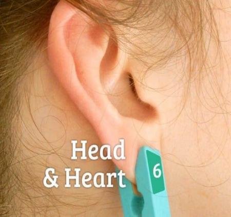 Голова и сердце