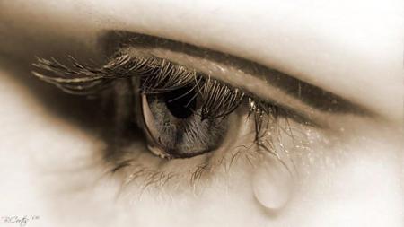плачет наше тело
