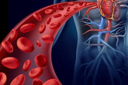 причины загрязнения крови