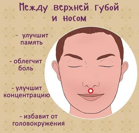 точка между губой и носом