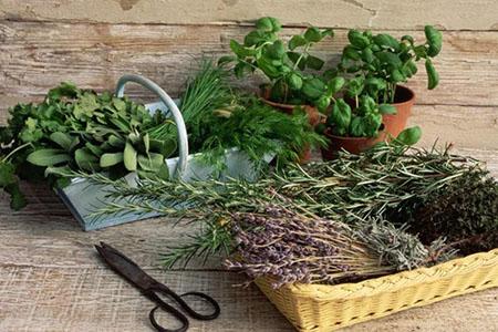 Материалы для травяной подушки