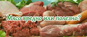 мясо вредно или полезно