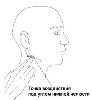 точка нижней челюсти